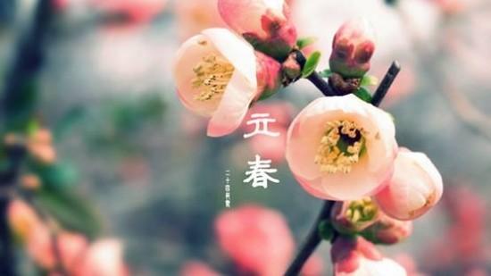 宁波润达资讯:你好!春天